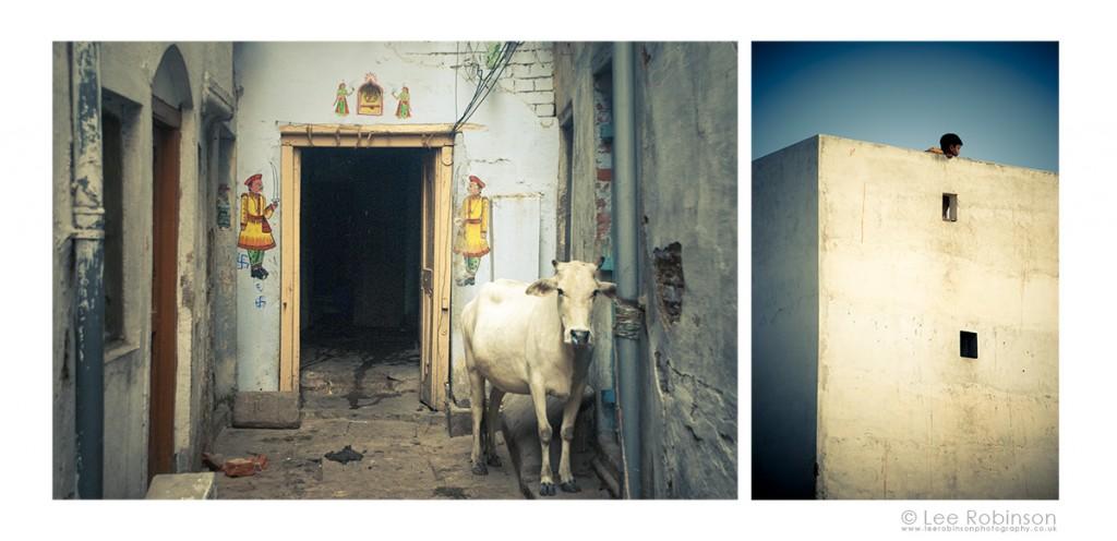 Varanasi Diptych